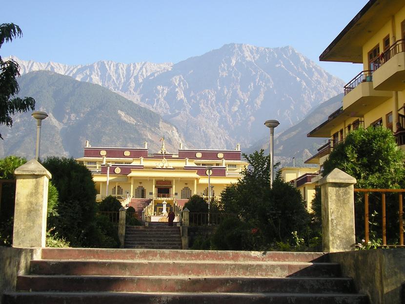 Monastère de Gyüto, Dharamsala, Inde du Nord, Novembre 2008