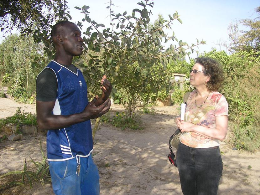 Jardinier Keur Massar, Sénégal